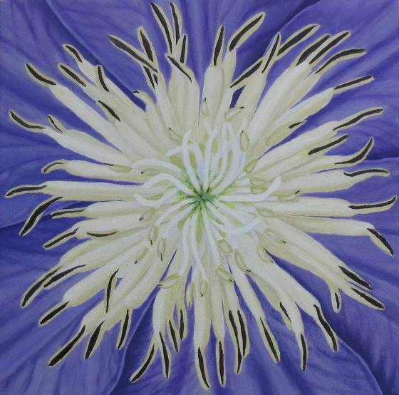 Clematis - commission, Elphick